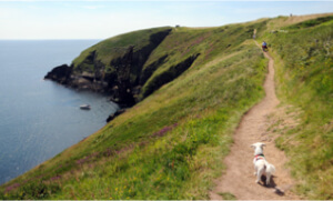 Ardmore Cliff Walks